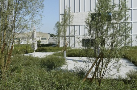 Nussbaum AG, Trimbach, Bepflanzung